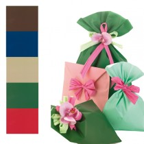 100 BUSTE REGALO IN PPL MAT A everyday classic 16x25cm 5 colori assortiti
