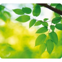 MOUSEPAD FOGLIE ecologici Earth Series™ Fellowes